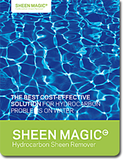 sheen-magic-broch